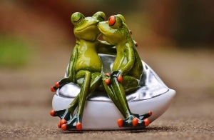 frogs-1234585_640
